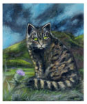 Manuela Jürgens Scottish Wildcat